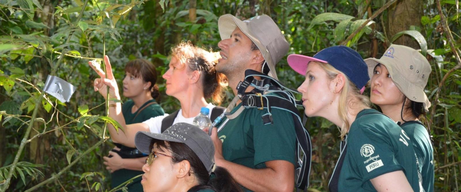 Peru conservation volunteers